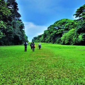 Guded Tour Corcovado National Park