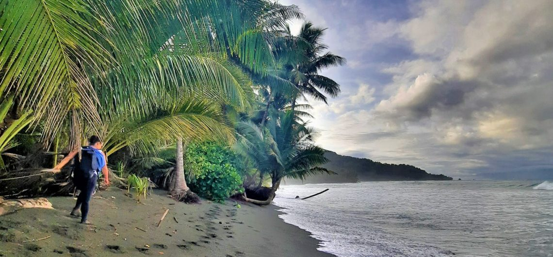 Beach and rain forest Corcovado National Park